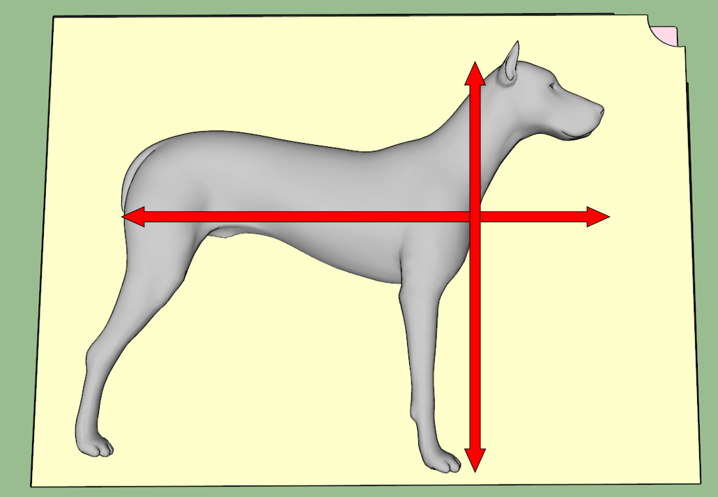 Orthopedic Dog Bed Width and Length Measurements